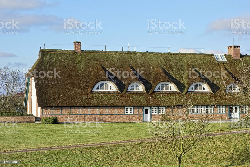 Large Thatched Roof royalty-free stock photo