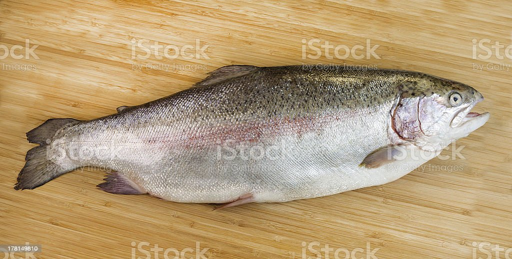 Large Trout on Bamboo Board royalty-free stock photo