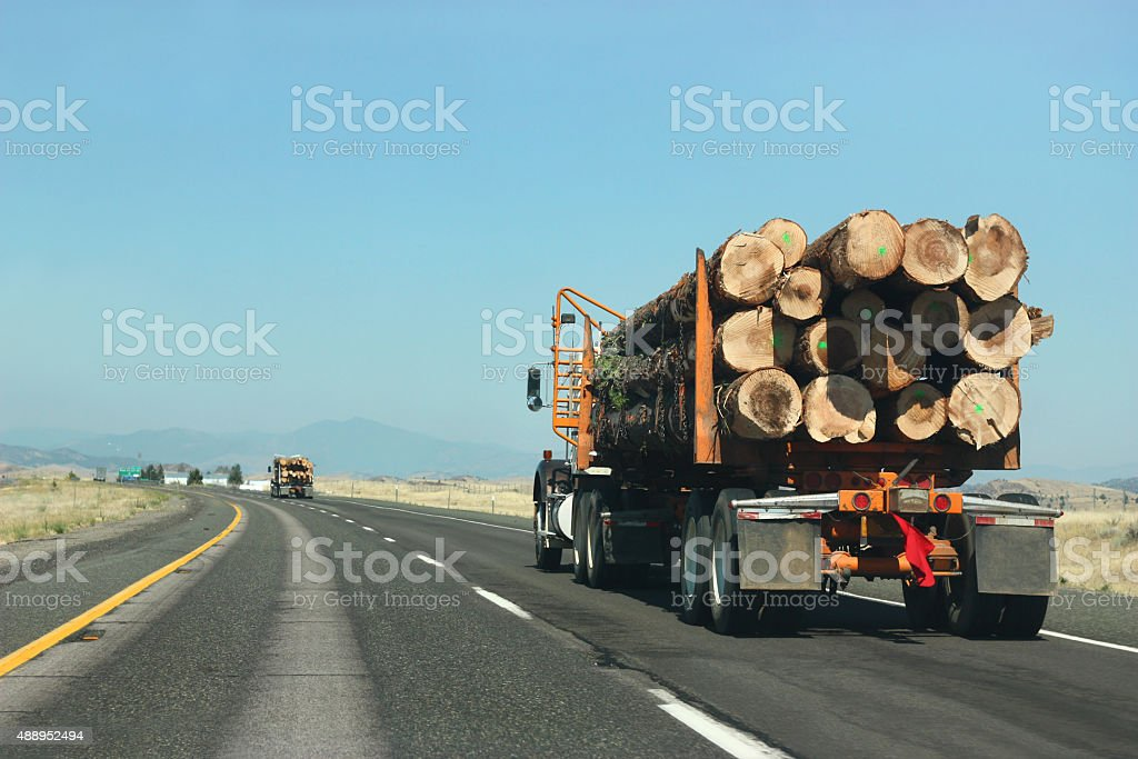 Large truck transporting wood on the road stock photo