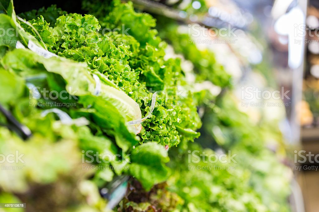 Large variety of lettuce displayed in grocery store produce section stock photo