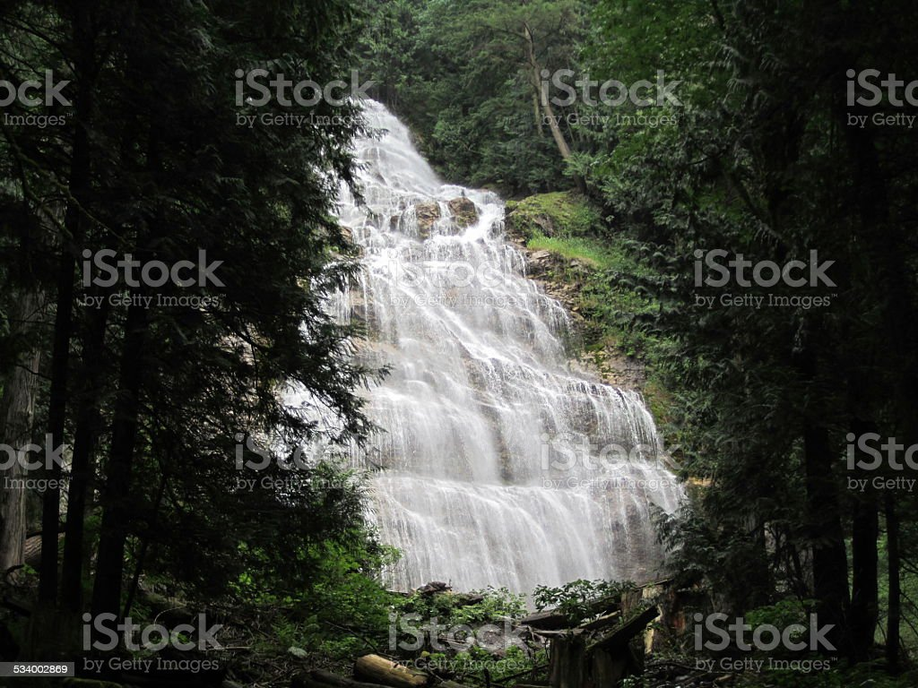 Large Waterfall between trees stock photo
