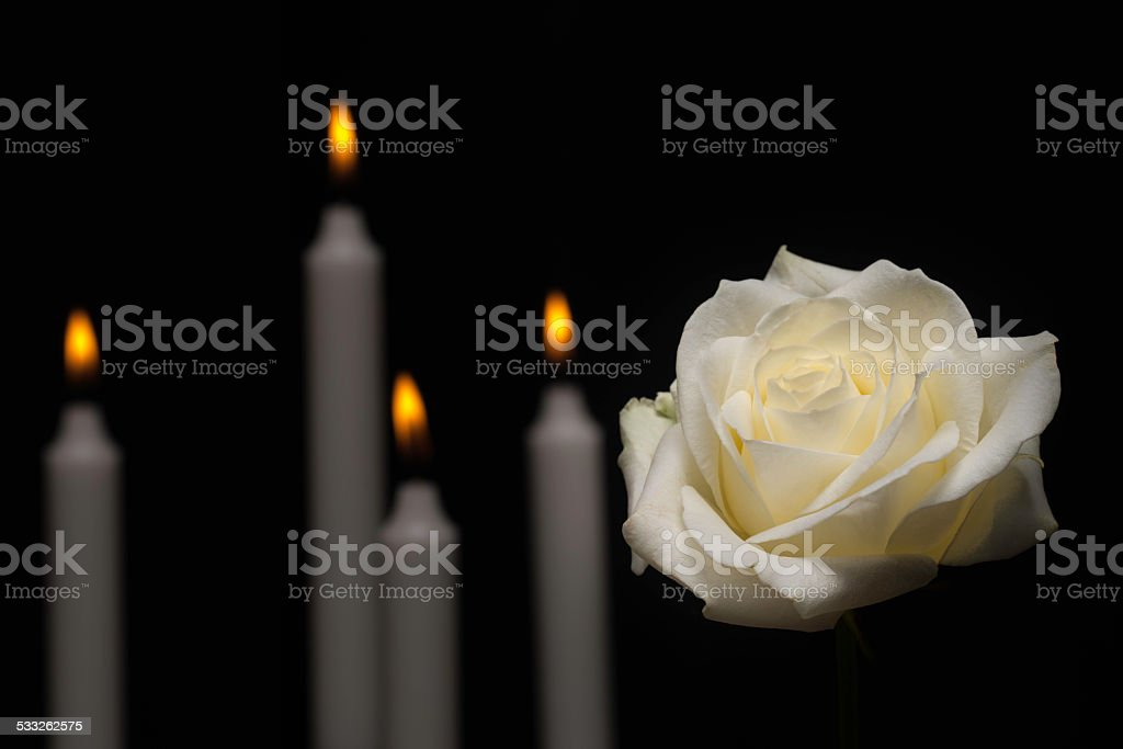 Large white rose in front of candles. stock photo