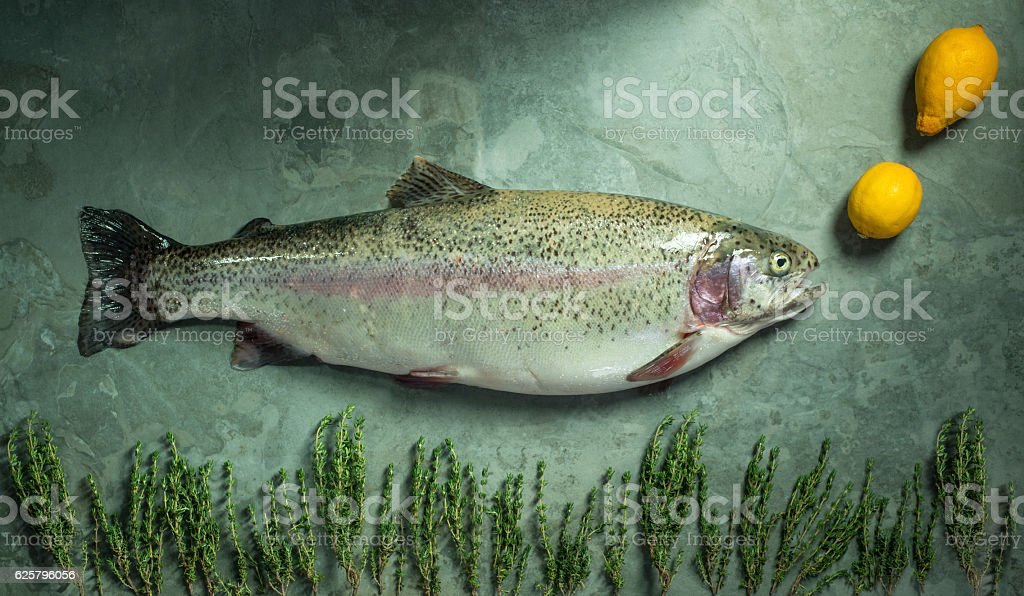 Large Whole Trout on Green Background Blowing Lemon Bubbles stock photo