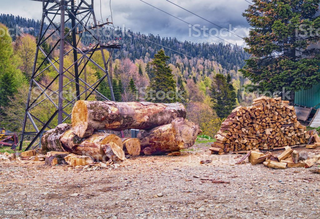 Large wooden logs and pile of firewood with mountain forest background stock photo