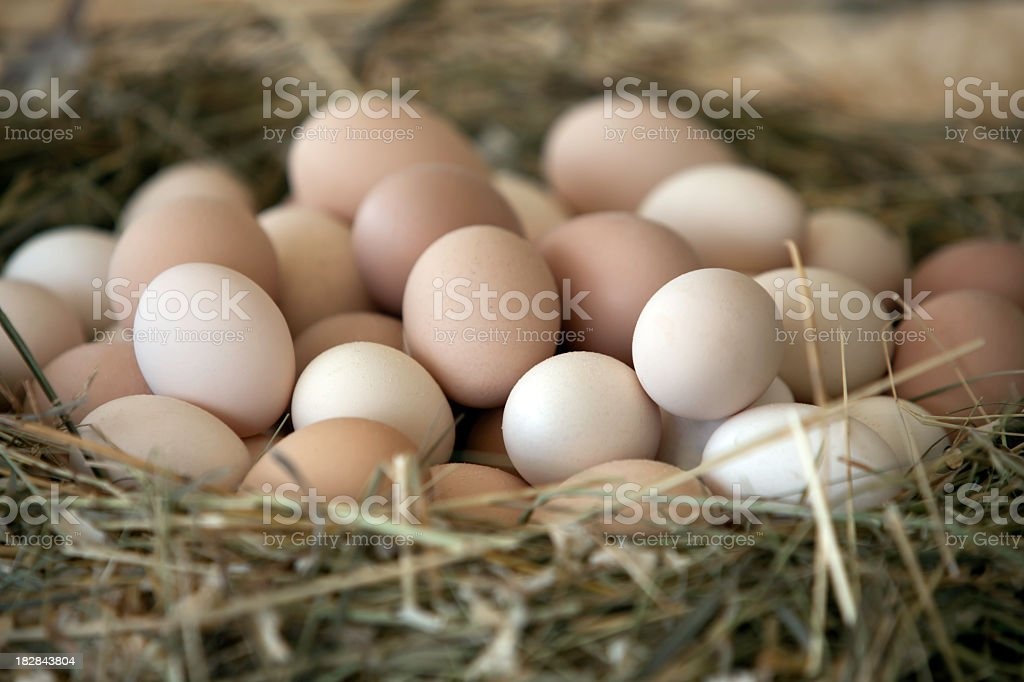 A large woven basket of eggs in abundance stock photo