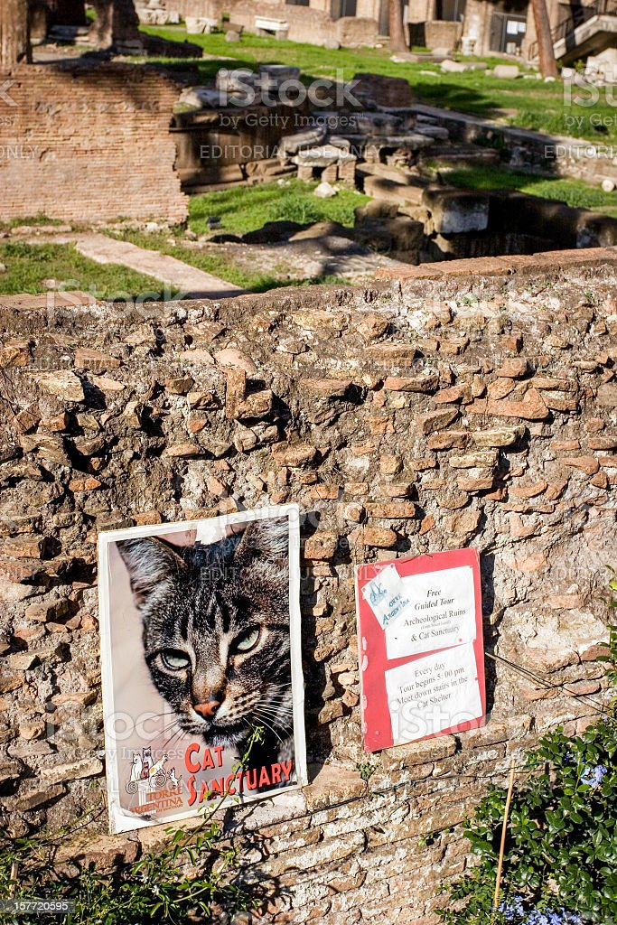 Largo di Torre Argentina Cat Sanctuary royalty-free stock photo