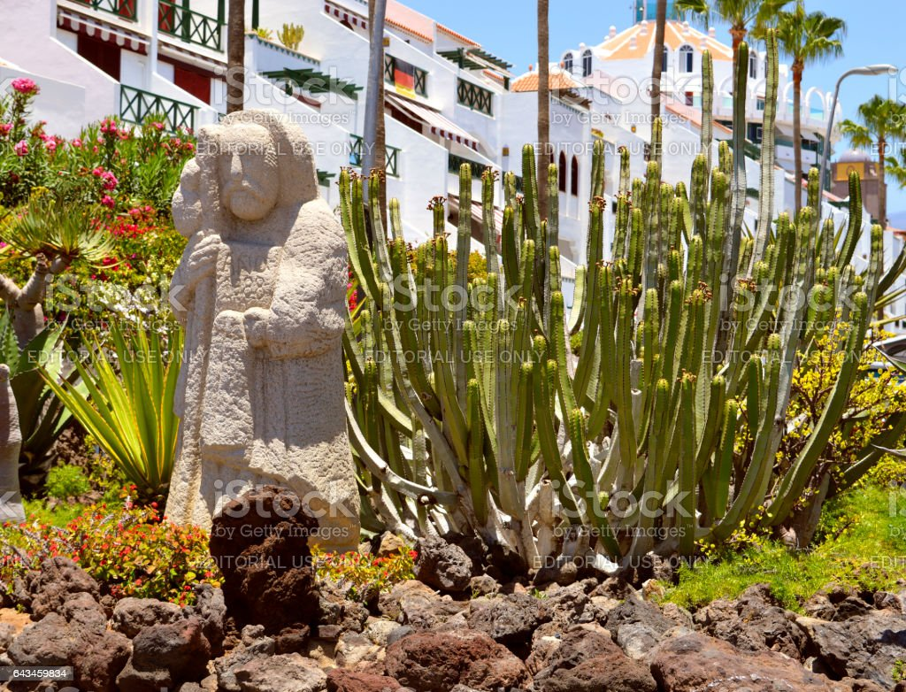 Playa De Las Americas cactus garden stock photo