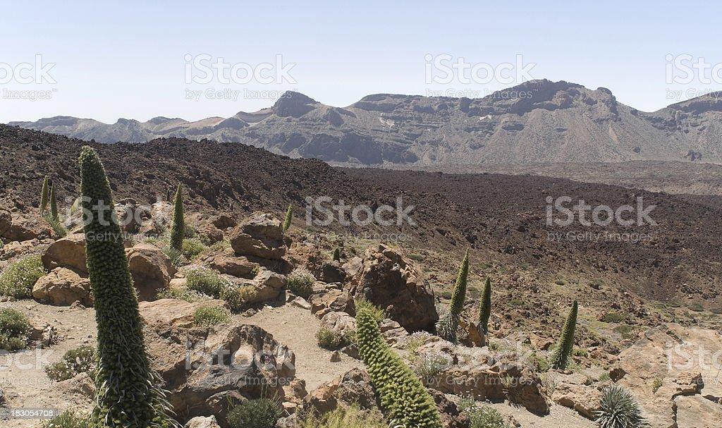 Las Canadas, Tenerife foto stock royalty-free