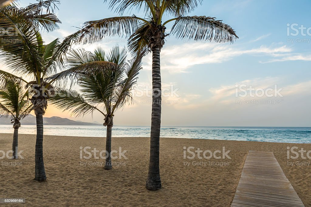 Playa de Las Canteras - Las Palmas de Gran Canaria stock photo