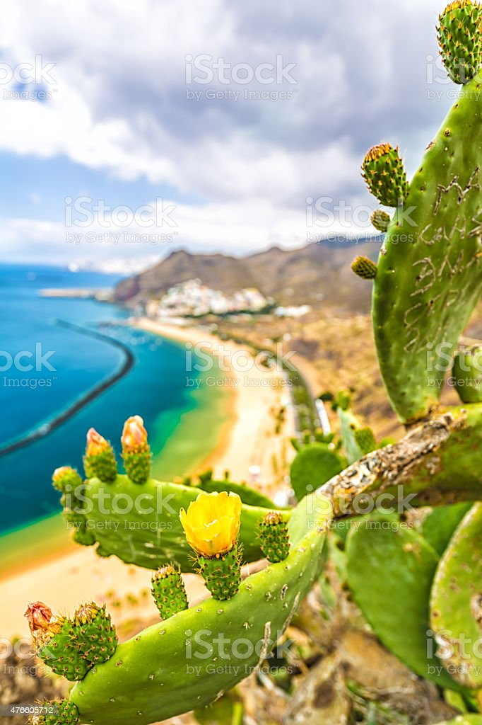 Las Teresitas Beach, Tenerife, Spain stock photo