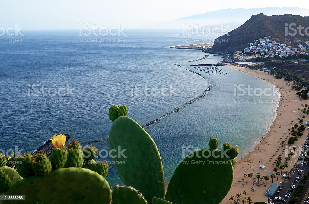 Las Teresitas beach, Tenerife,Canary Islands. stock photo