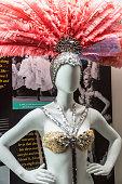 Las Vegas Dancer Costume Display