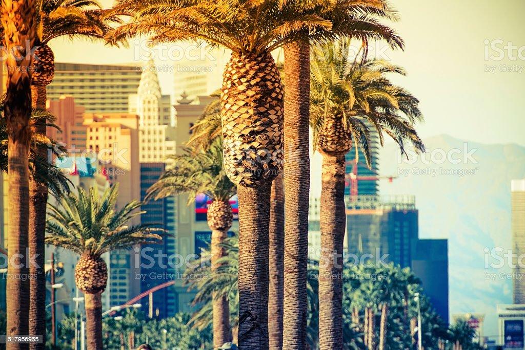 Las Vegas Strip Palms stock photo