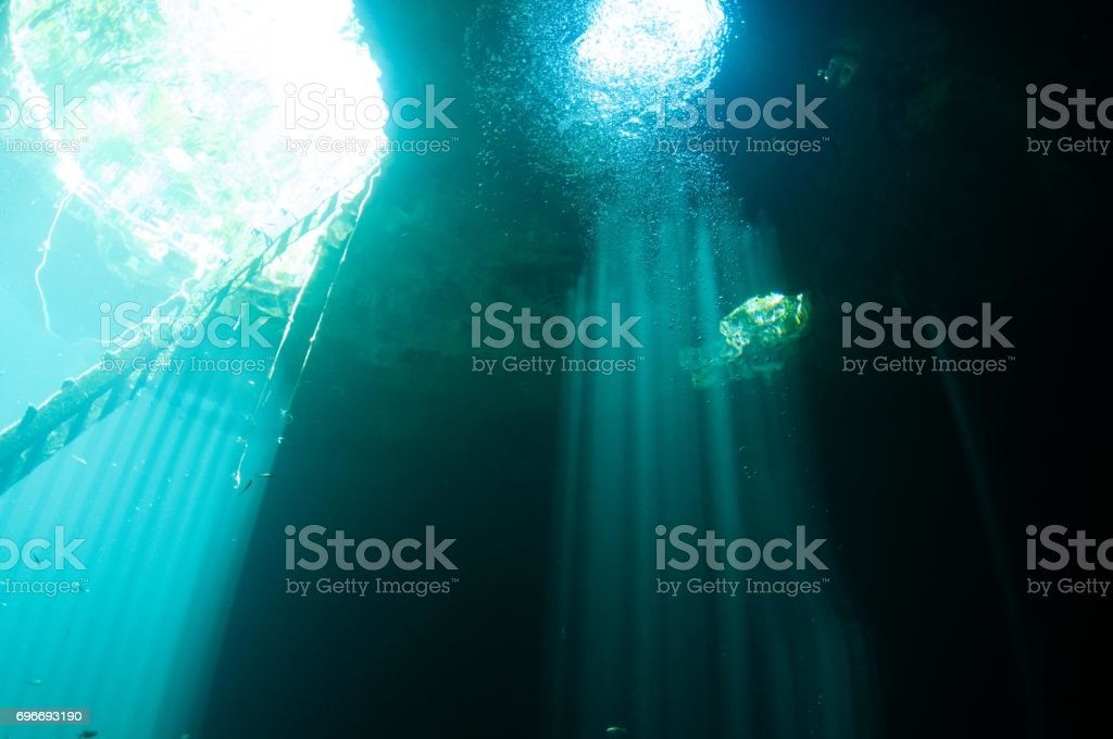 laser beams of light coming in from entrance viewed below scuba cenotes 1 stock photo