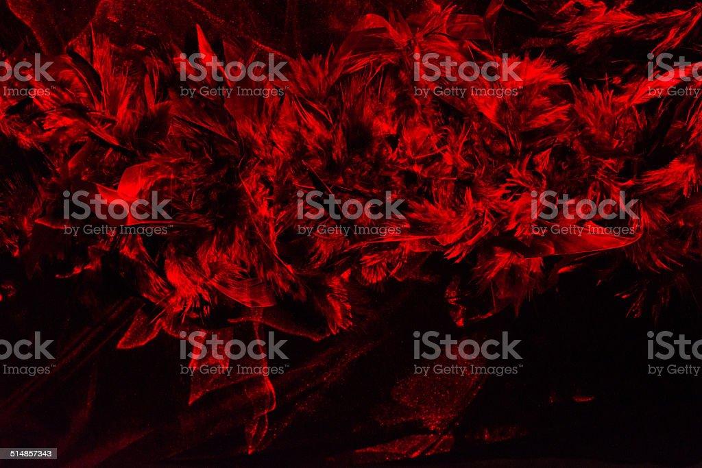 Laser lit boa stock photo
