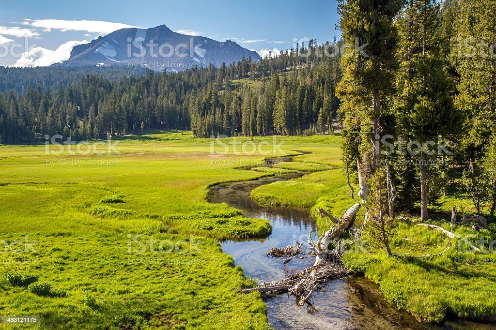 Lassen Volcanic Meadow stock photo