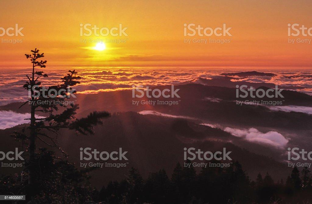 Lassic View Sunset stock photo