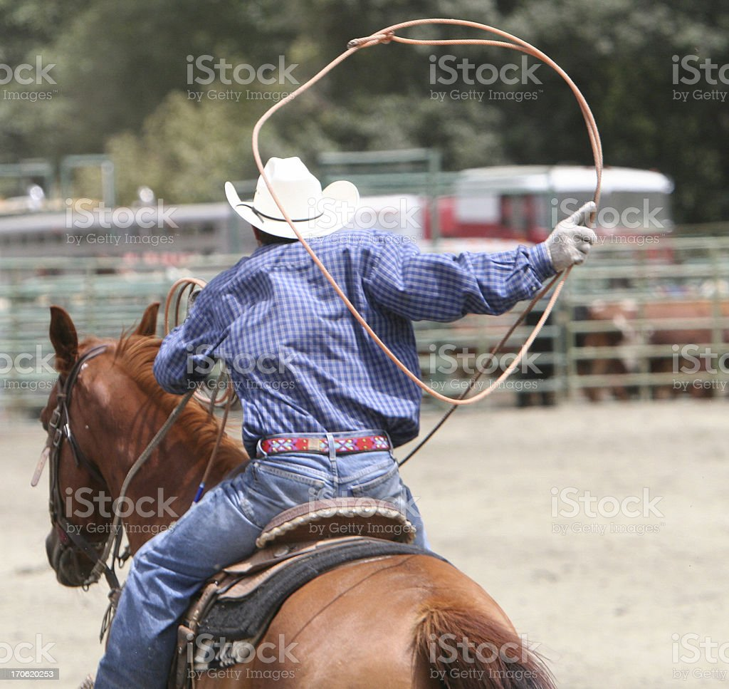 Lasso at the Rodeo stock photo