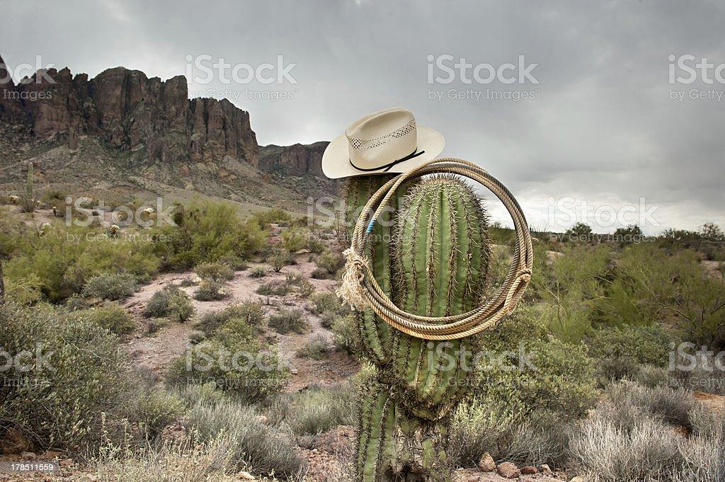 Lasso on cactus stock photo