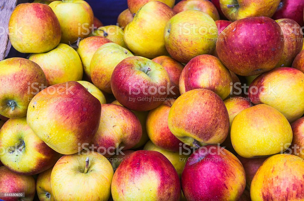 Last Fall's Apples stock photo