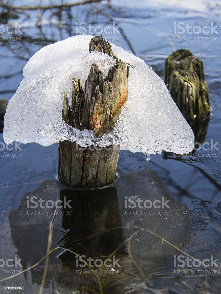 last ice royalty-free stock photo