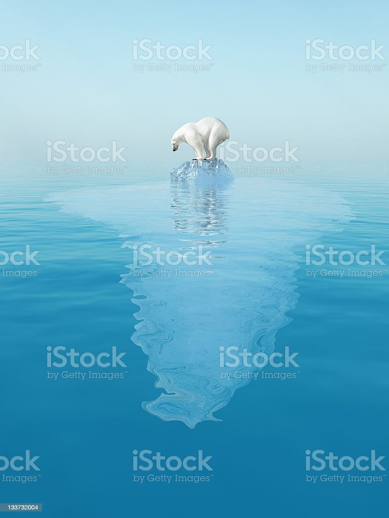 last polar bear on iceberg stock photo