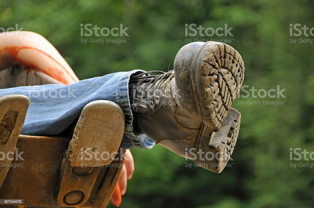 Last Remains royalty-free stock photo