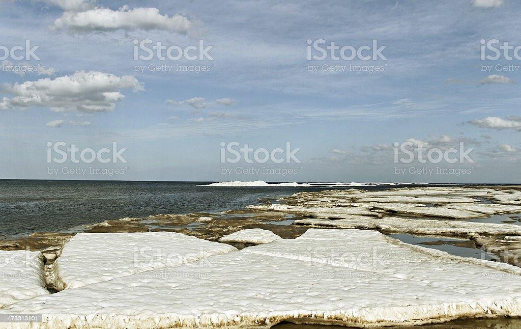 Last snow. royalty-free stock photo