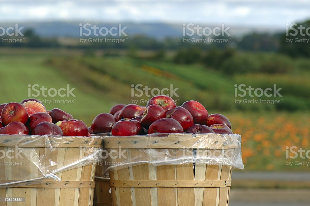 last stop to applesauce stock photo
