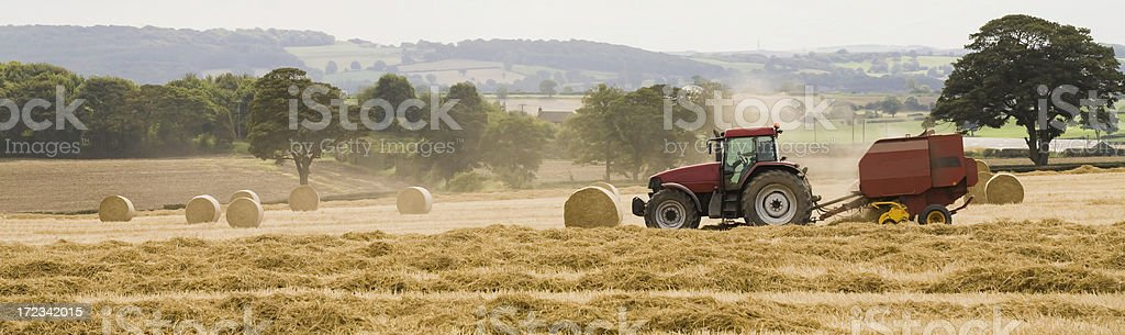 Last Straw (farming, agriculture, harvest) royalty-free stock photo