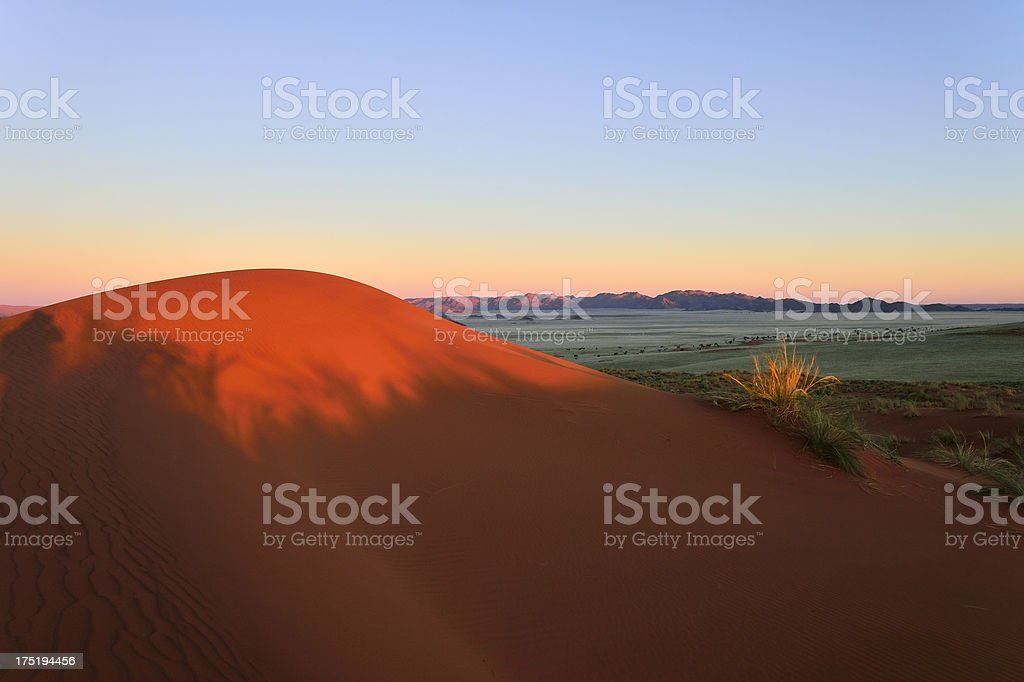 Last sunlight on a dune royalty-free stock photo