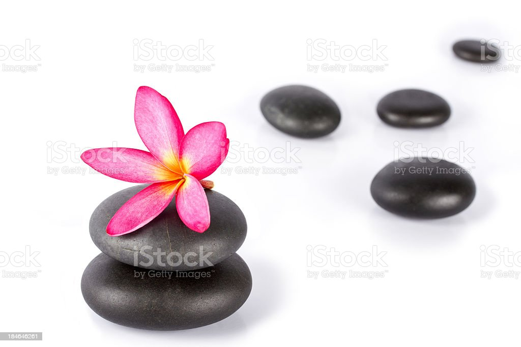Lastones for massage therapy with frangipani flower isolated on white royalty-free stock photo