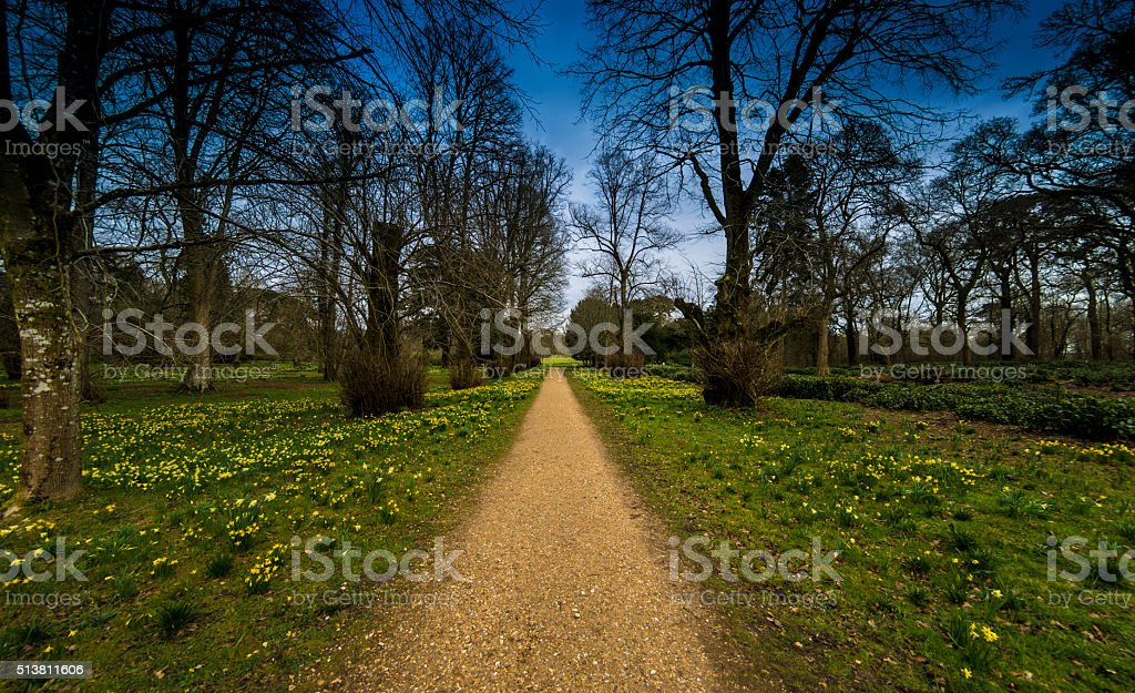 Late Afternoon in Spring stock photo