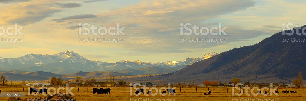 Late Afternoon Light Over Carson Valley, Nevada stock photo