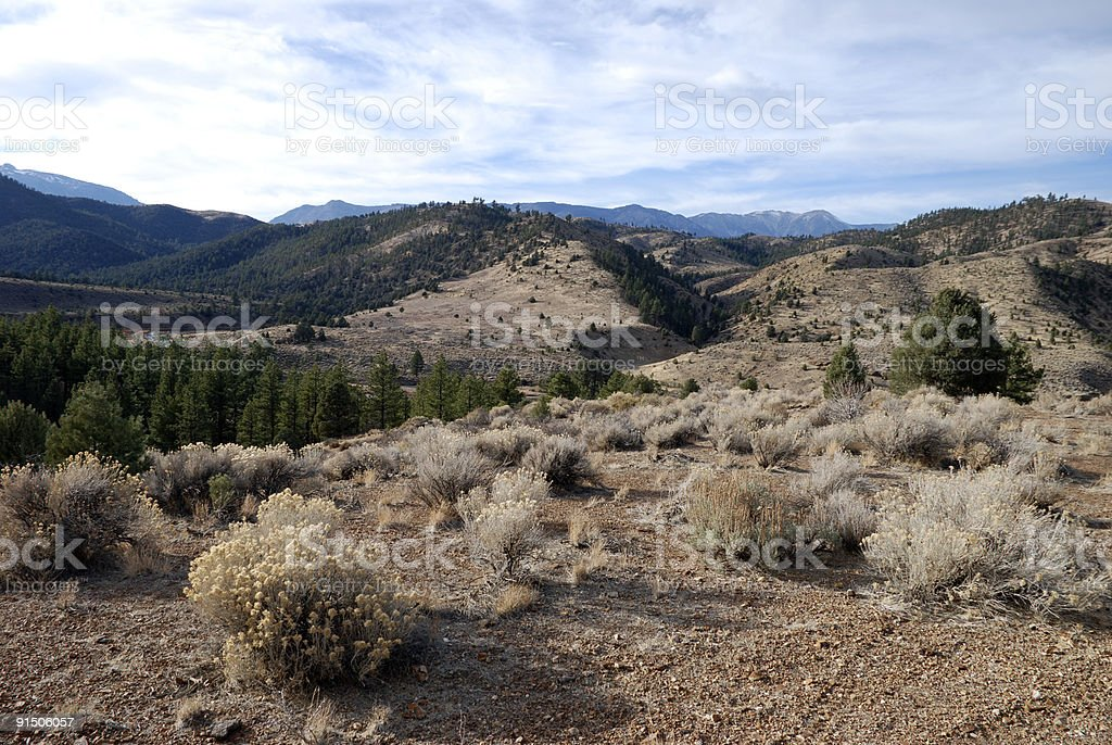 Late Afternoon Nevada Landscape royalty-free stock photo