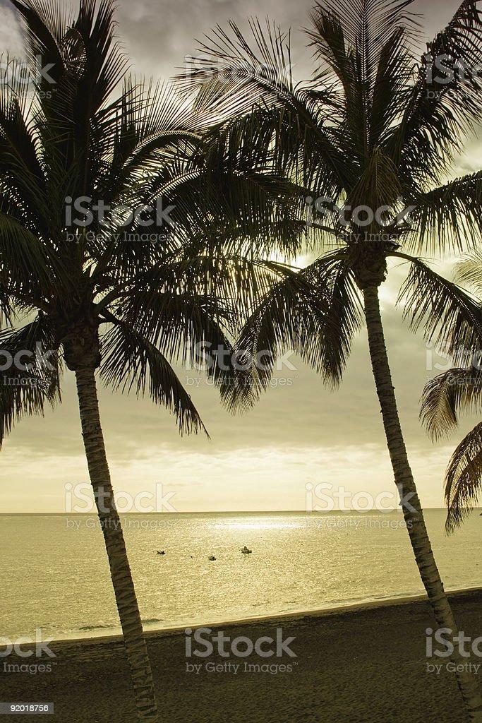 Ao final da tarde na praia foto de stock royalty-free