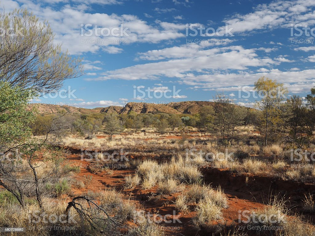 Late afternoon Outback at Simpsons Gap stock photo