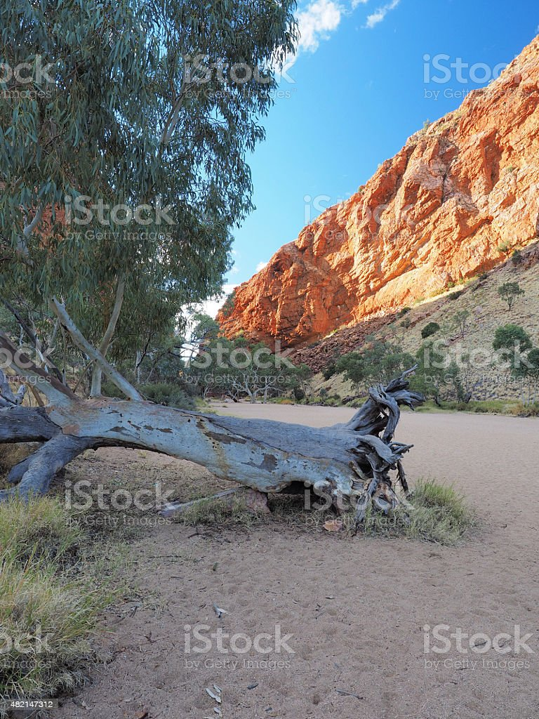 Late afternoon Rock wall glowing in the dry Simpsons Gap stock photo