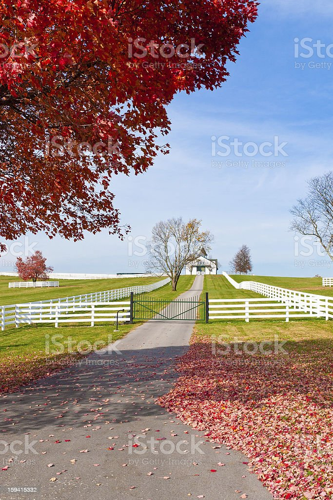 Late Autumn at countryside. royalty-free stock photo