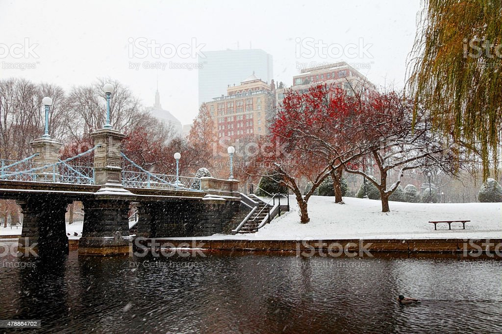 Late autumn snow in Boston stock photo