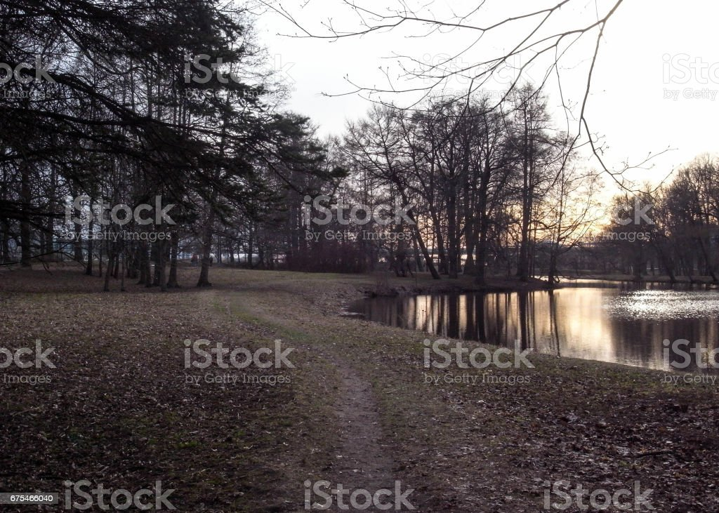 Late evening evening in the park. stock photo