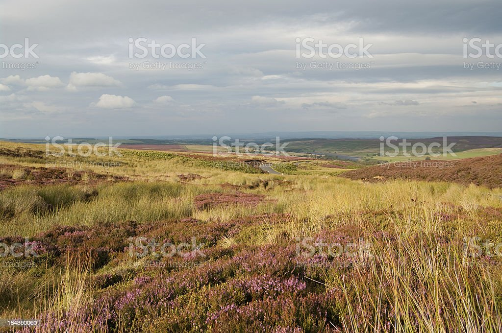 Late evening view across Yorkshire Moors royalty-free stock photo