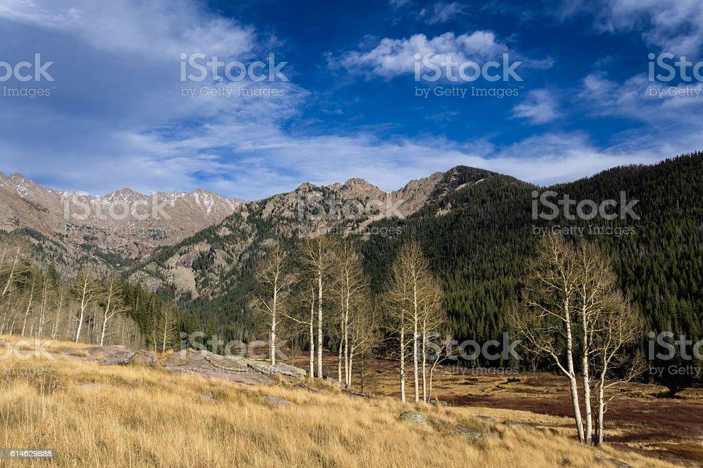 Late Fall In Colorado stock photo