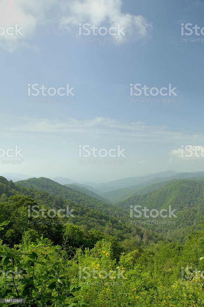 Late Spring in Great Smoky Mountains National Park royalty-free stock photo