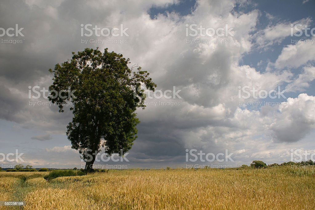 Late Spring Storm Approaching stock photo
