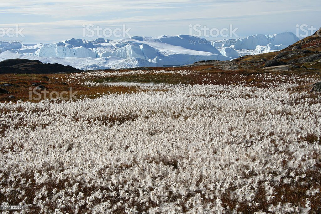 Late summer in West Greenland stock photo