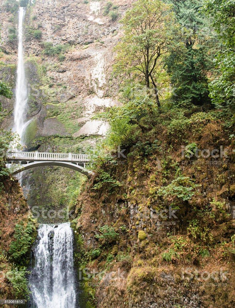 Latourell falls in Oregon stock photo