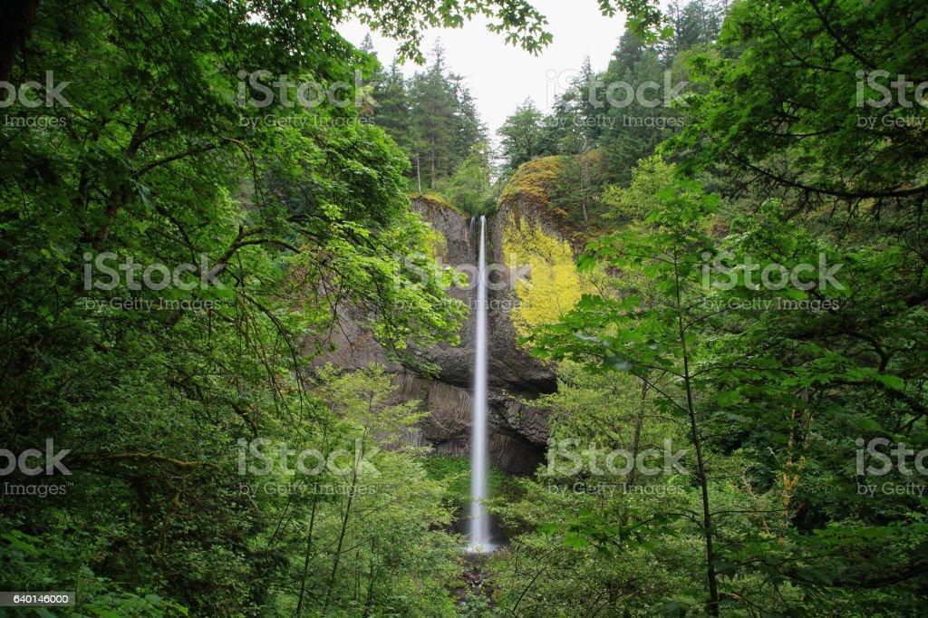 Latourell falls waterfall, Oregon stock photo