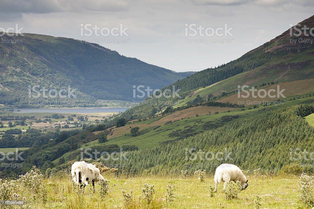 Latrigg and Newland Valley stock photo