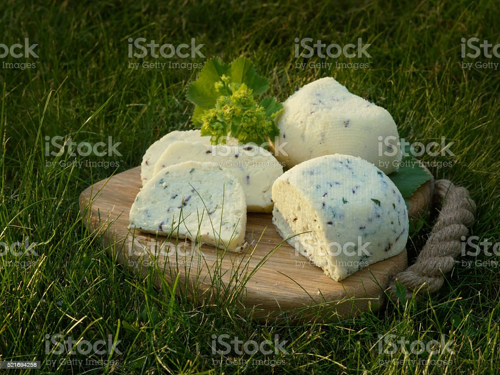 Latvian National solstice cheese St. John's cheese royalty-free stock photo